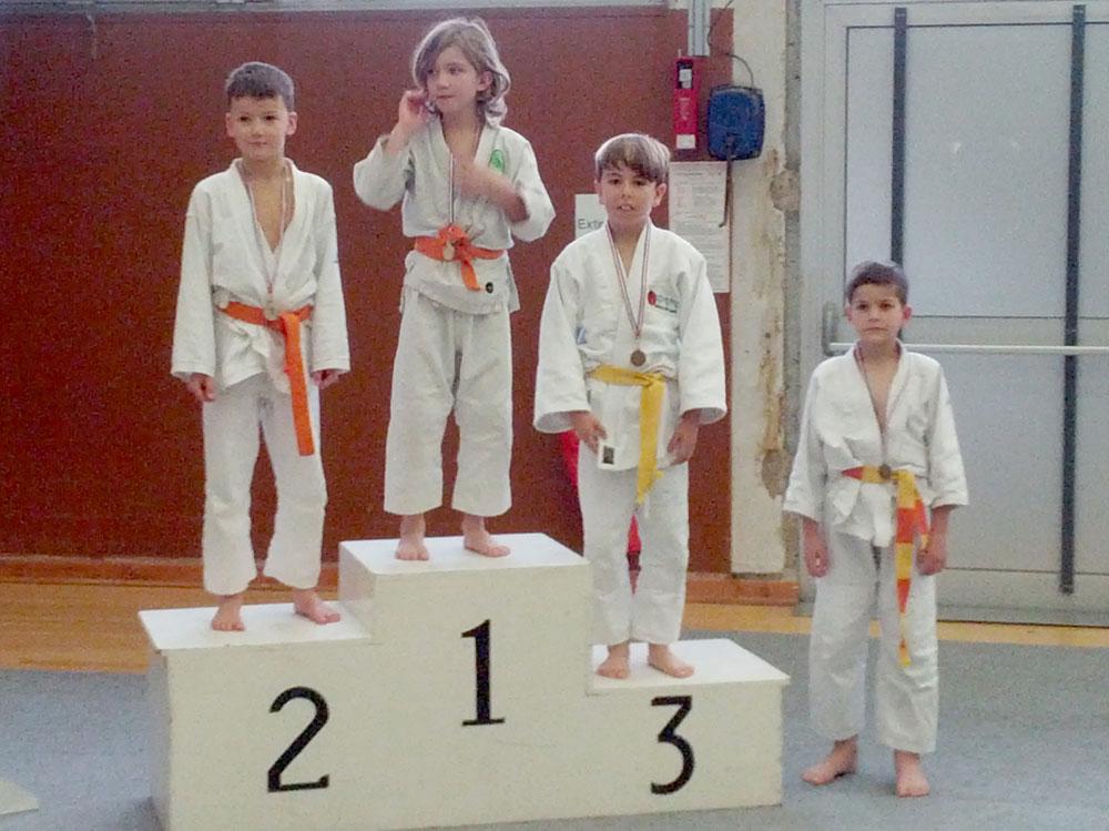 tournoi de vienne judo